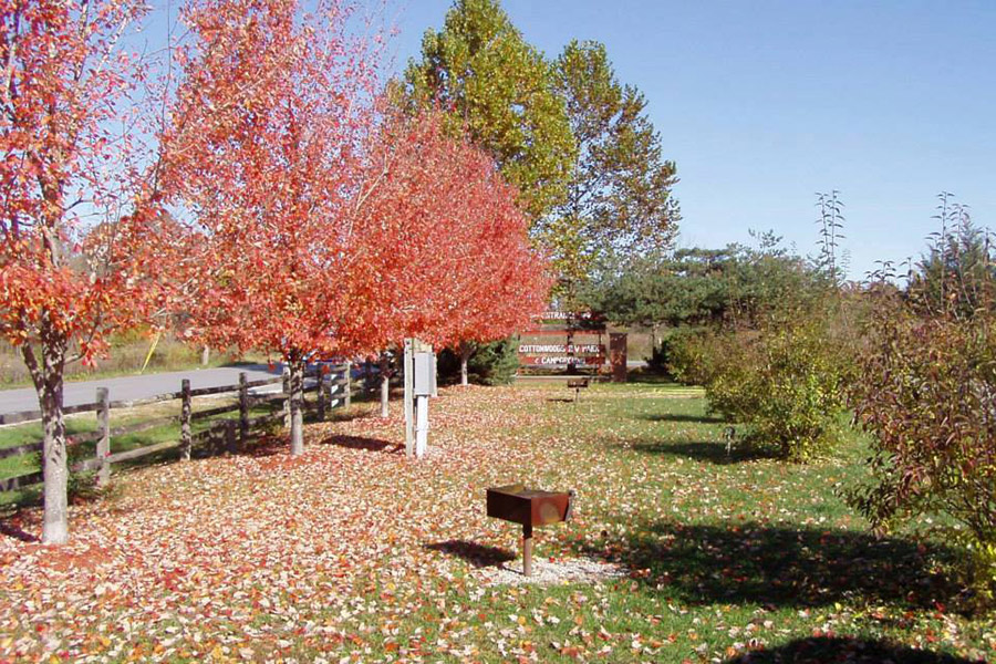 Autumn Scene RV Sites